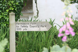 Sign Post from Lavender Cottage